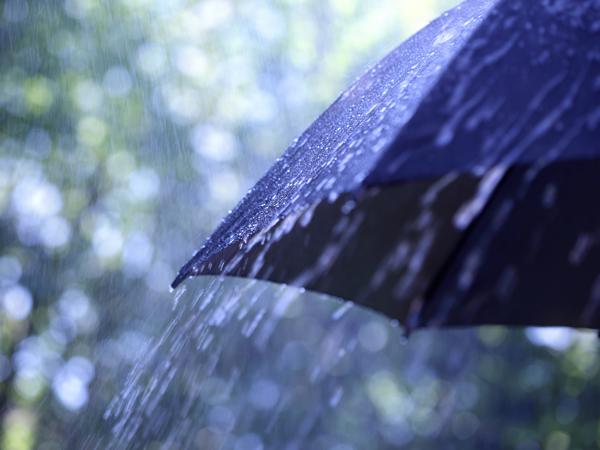 水を弾かなくなった傘を復活させる方法