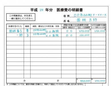 「サラリーマン」のための【医療費控除の確定申告方法】簡単3 ...