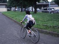 自転車の 自転車選び方 クロスバイク : ミニベロ・クロスバイク ...