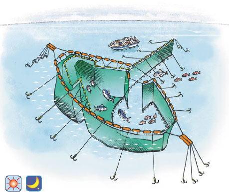フレンチガイド、定置網漁に出る(能登)(2ページ目)