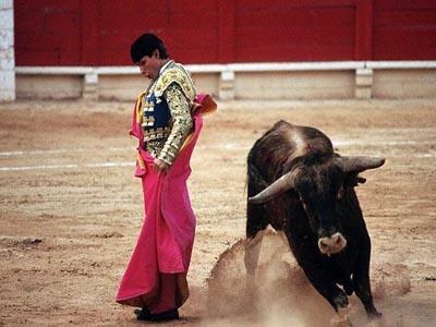 スペインといえば闘牛にフラメンコ。どの町でも見ら... スペインといえば闘牛にフラメンコ。どの町