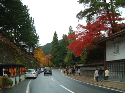 高野山山内の紅葉