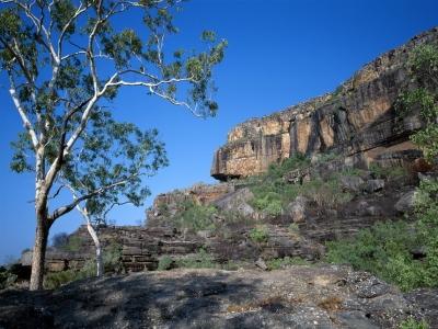 カカドゥ国立公園の画像 p1_3