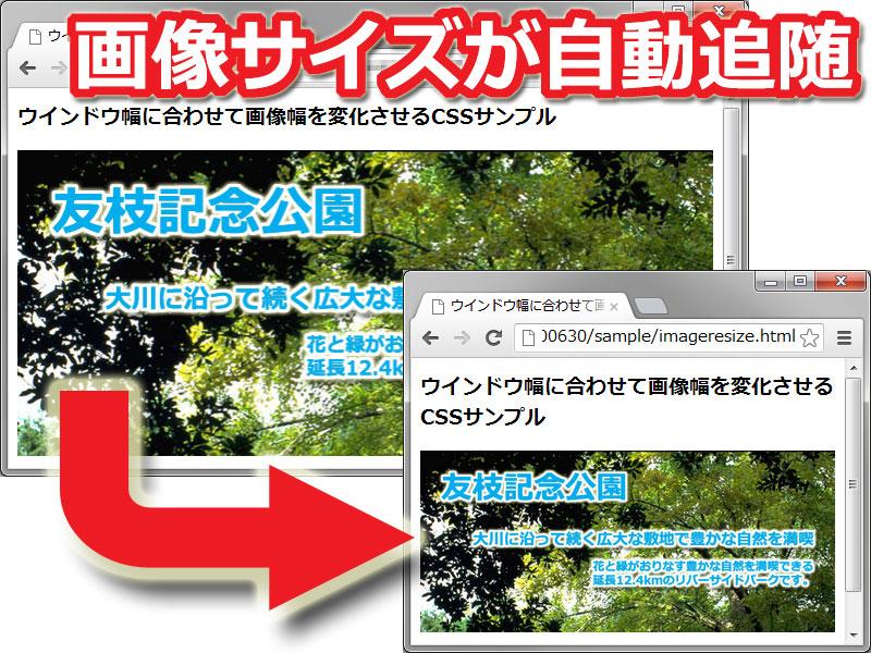 画像 幅いっぱい pdf