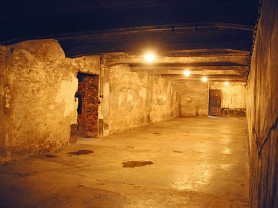アウシュヴィッツ強制収容所の画像 p1_37