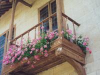 ヨーロッパの家の窓辺を飾るゼラニウム