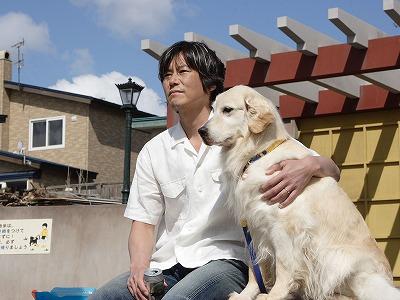 犬と私の10の約束(動画)の映画をフルで無料視聴! …