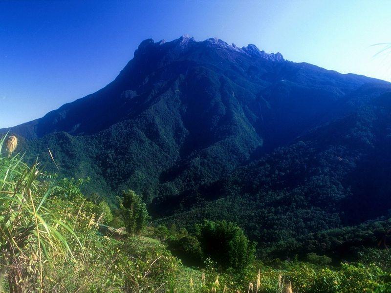 キナバル山の画像 p1_1