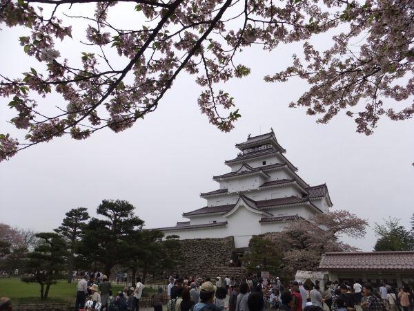 桜に覆われた鶴ヶ城