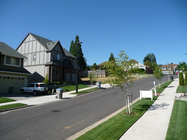 アメリカの住宅街 アメリカの住宅街の様子。電線が地下埋設され大変美しい。そうした点も、ス...
