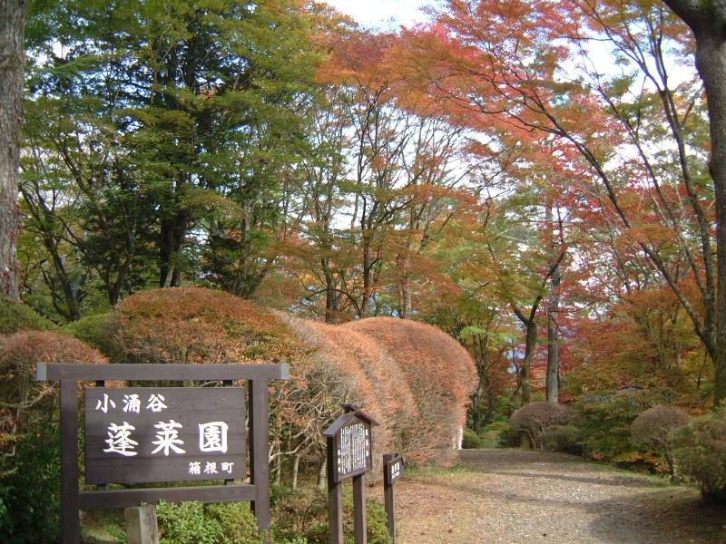 箱根・蓬莱園の紅葉