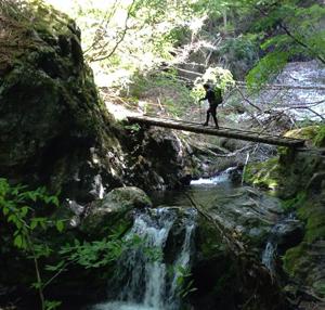 週末に、講演がなければ山歩き。身近に自然を感じていることが緊急時にも必ず役に立つ。 体力をつけるためにも欠かせない