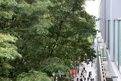 From a balcony overlooking the Omotesando
